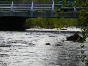 RoanokeRiverBlueway-hazard-MillLane