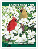 DGIF-BirdingWildlife-TrailGuide