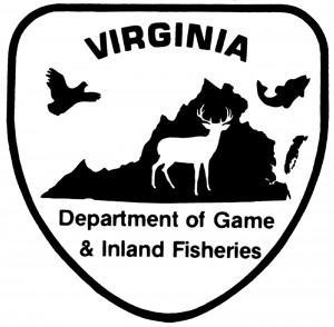 Boat Registration & Titling FAQs | Virginia DWR